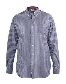 D555 Frankston Stripe Long Sleeve Button Down Shirt