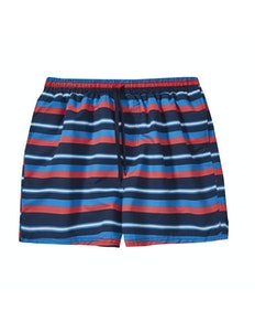 Stripe Swim Shorts Navy