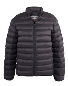 D555 Paxton Padded Hooded Black