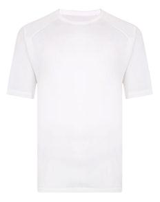 Bigdude Raglan Stretch Performance T-Shirt White