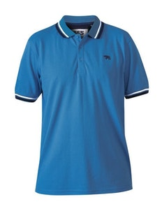 D555 Allante Pique Polo Shirt Royal Blue