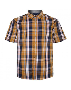 Espionage Short Sleeve Check Shirt Navy/Mustard