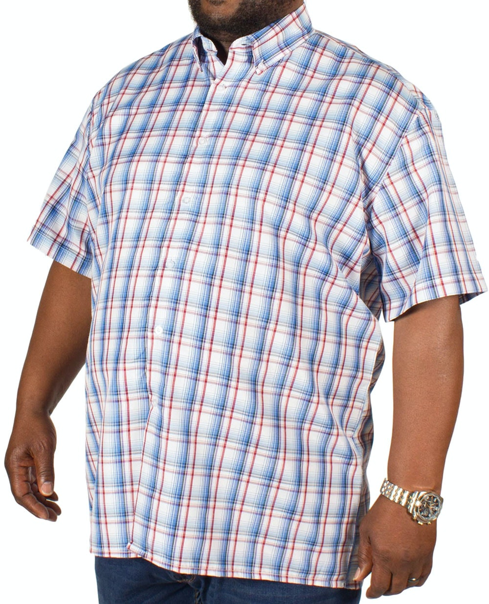 Fitzgerald Jamie Check Shirt Blue/Red