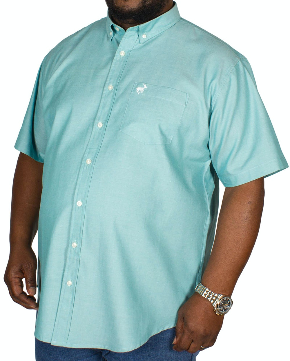 Bigdude Short Sleeve Oxford Shirt Teal