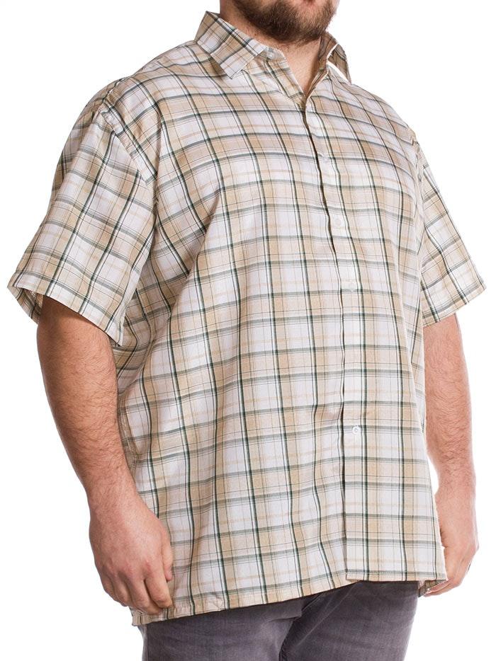Fitzgerald Morgan Short Sleeve Green Check Shirt