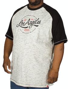 D555 Judson Printed Reglan T-Shirt Grey