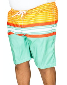 Ed Baxter Concha Striped Swim Shorts Mixed