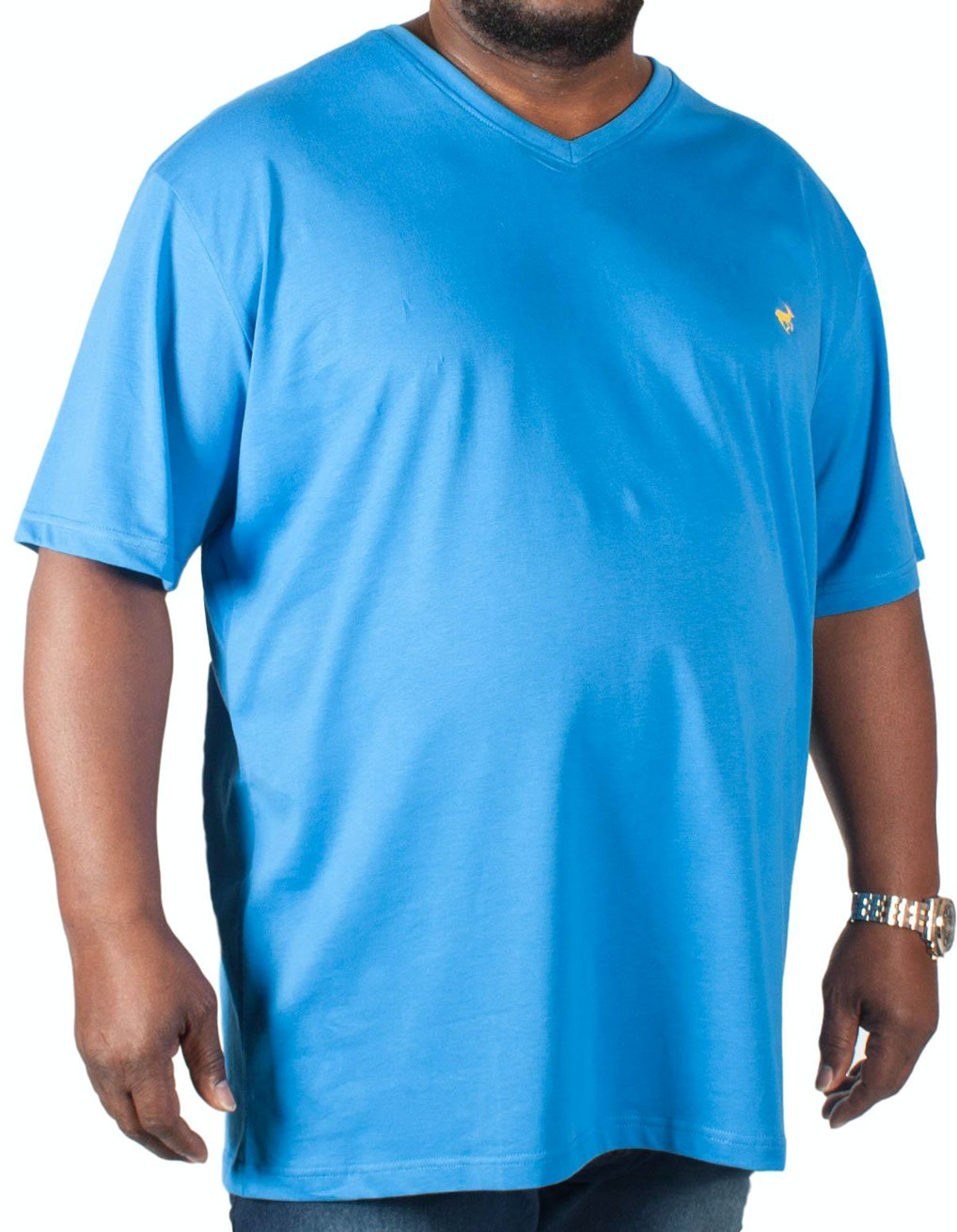 Bigdude Signature V-Neck T-Shirt Blue Tall
