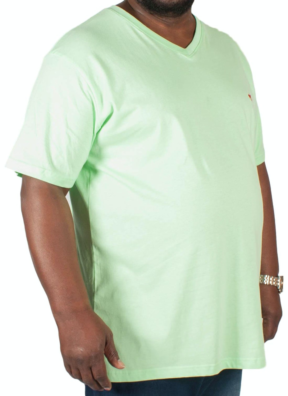 Bigdude Signature V-Neck T-Shirt Green Tall