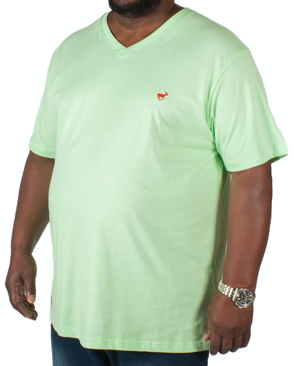 Bigdude Signature V-Neck T-Shirt Green