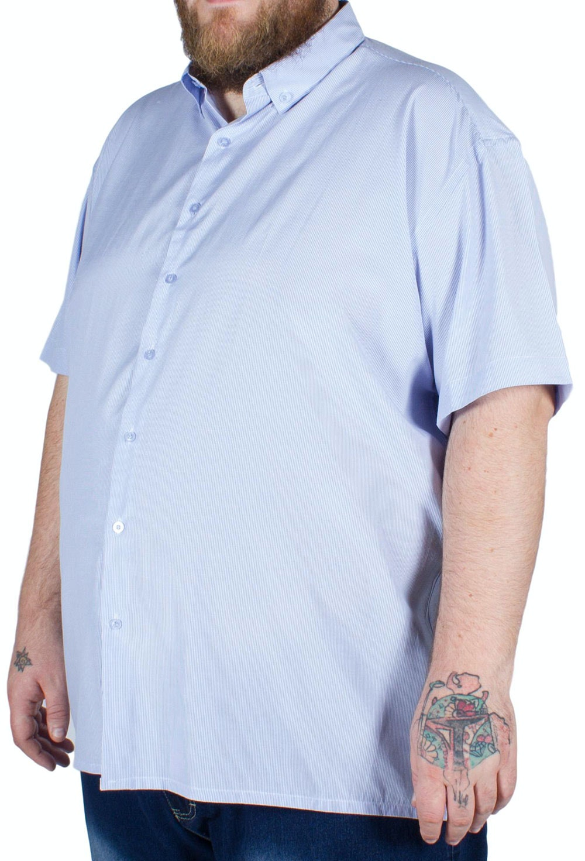 Fitzgerald Spain Short Sleeve Striped Shirt Blue
