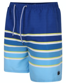 Espionage Stripe Swim Shorts Blue